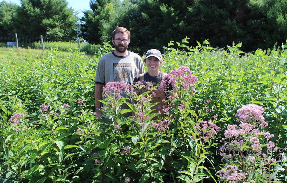 Prairie Farm couple cultivates income with flowers