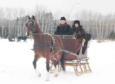 Sleigh and Cutter Rally