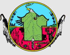 Bad River logo