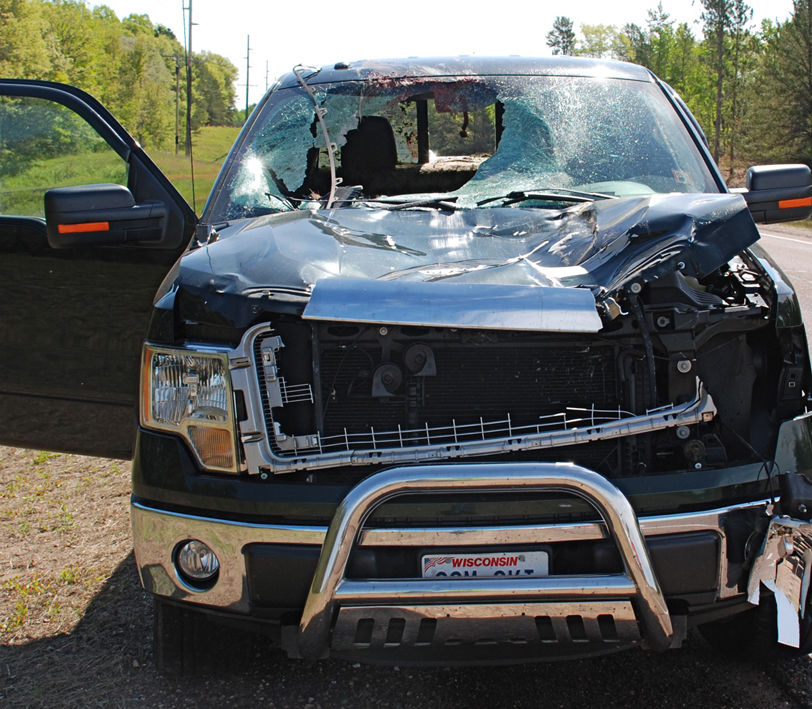 Potential For Deer Crashes Will Be High In June