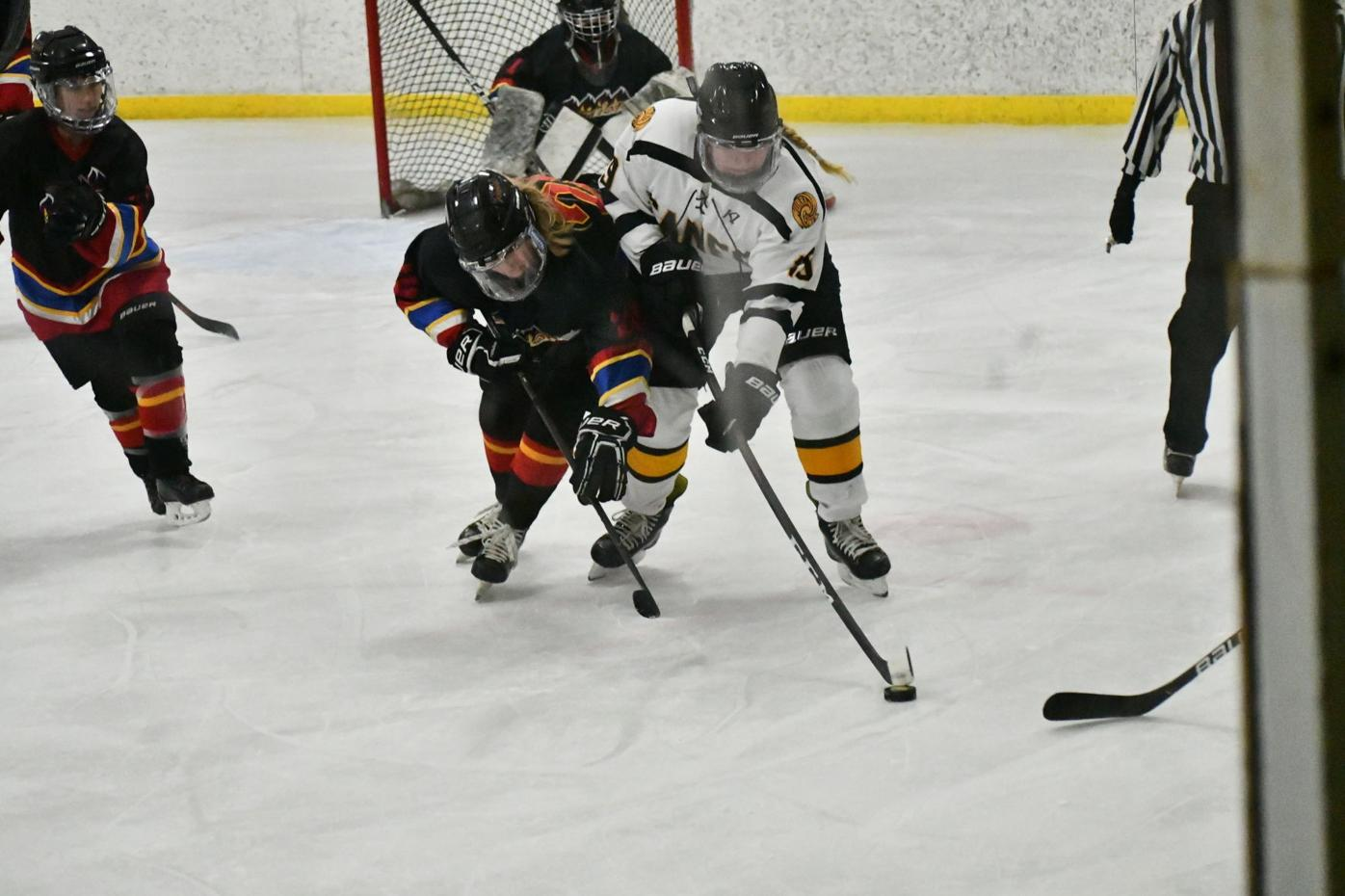 Fighting for the puck