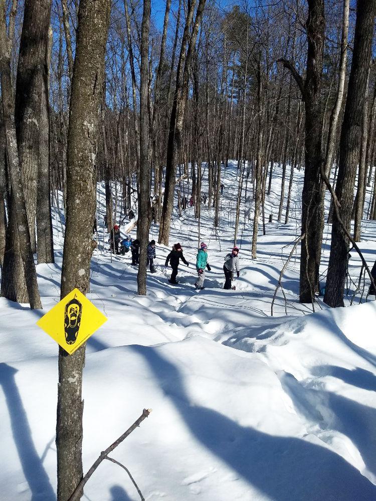 Snowshoe field trip