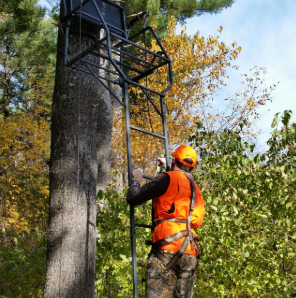 Tree stand safety hunter