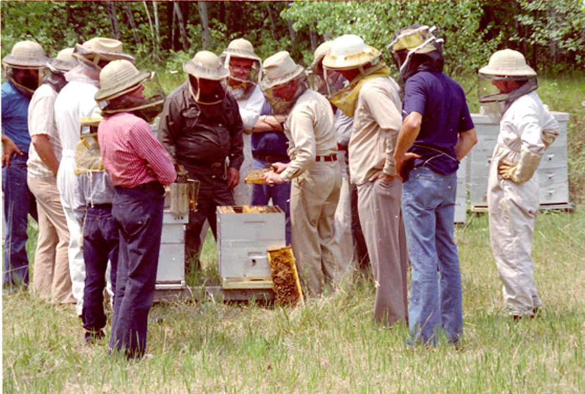 beekeeping meeting set for saturday local apg wi com