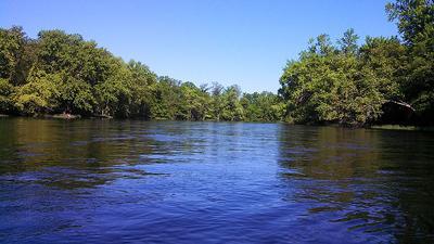 Red Cedar River (copy)