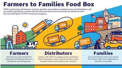 Farm to Families Food Distribution