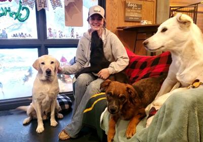 Little Red Barn Dog Rescue: Giving comfort and joy to pooches