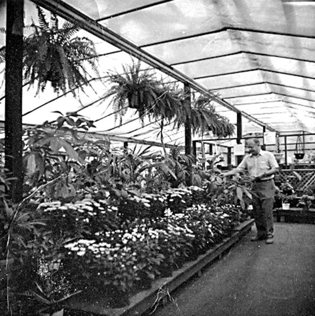 Berridge Nurseries Founder