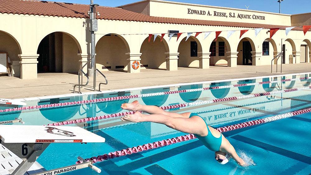 Swim for the Light