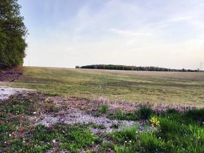 Caledonia solar farm receives final OK