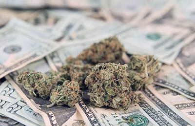 Marijuana businesses