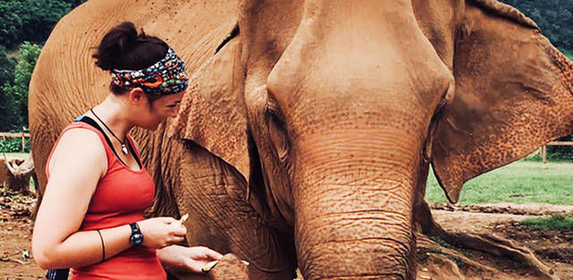 Laingsburg woman studies marine life around Thailand