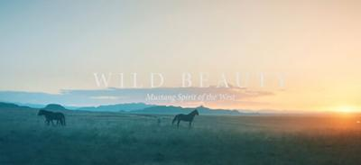 Director behind Disney's 'Black Beauty' and horse protection lobbyist will partner to produce film