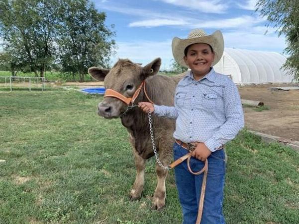 Juan Rico, of the Adrian Livestock 4-H