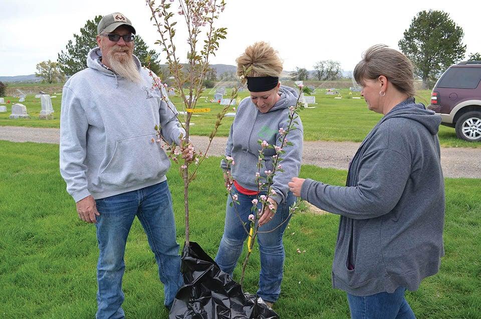 Rustic Ranch Nursery owners donate ornamental trees, shrubs