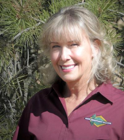 Idaho's shared effort toward reducing wildfire and forest disease has a new coordinator