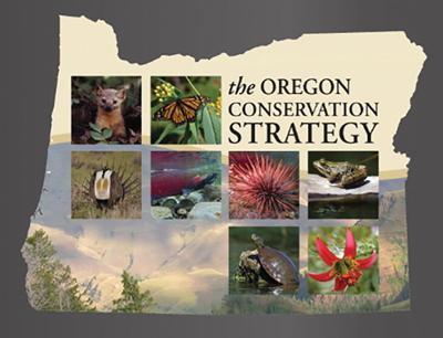 State seeks public's help sought to help monitor all wildlife species