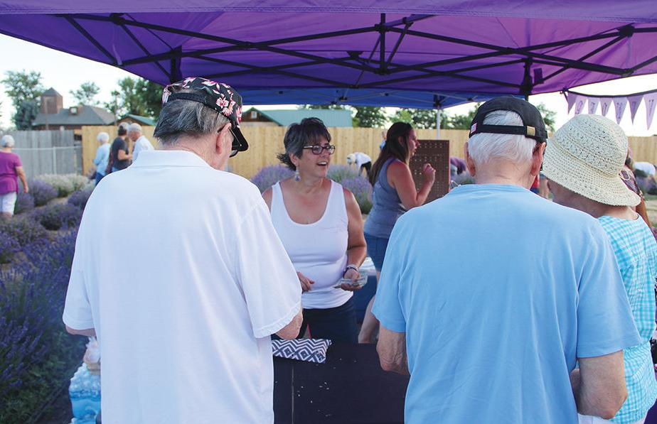Hundreds flock to Western Treasure Valley's first ever lavender festival