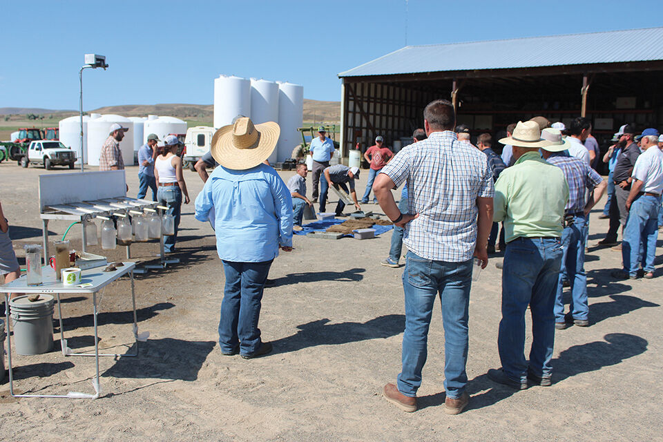 Crowd watches irrigation demonstration