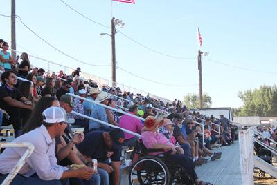 Rodeo defies COVID odds: No new outbreaks despite record crowds