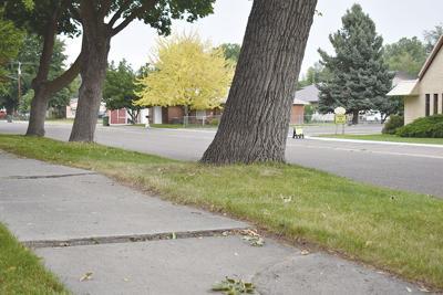 City seeks path to sidewalk repairs