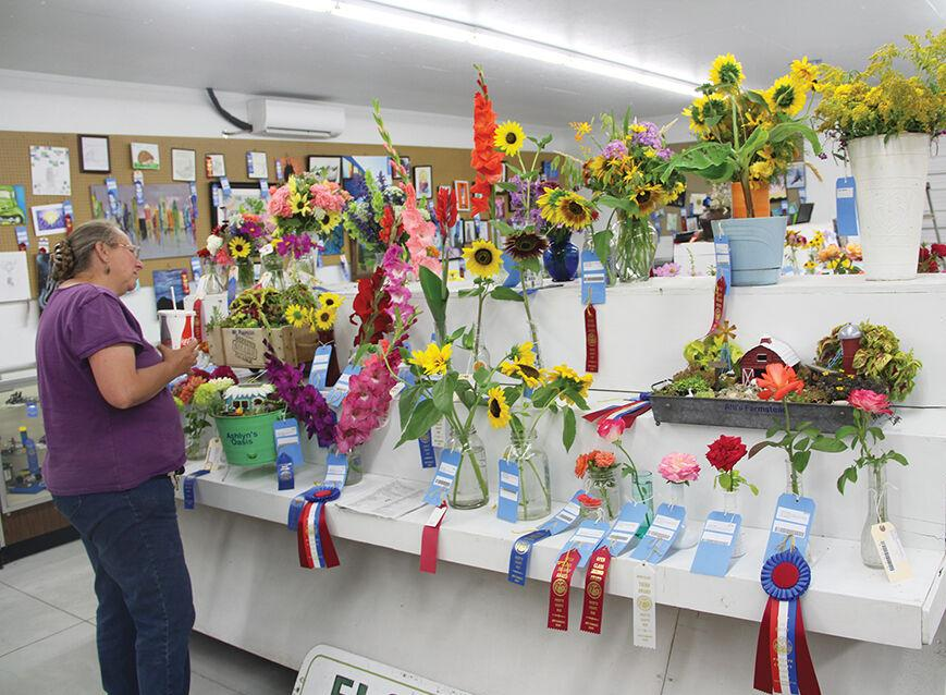 Entering open class exhibits in the Payette County Fair gets overhaul this year