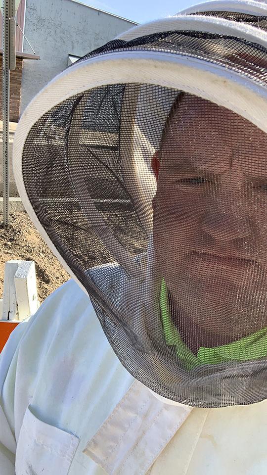 Adam Brown bees