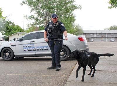 New K-9 officer officially on the job as of today