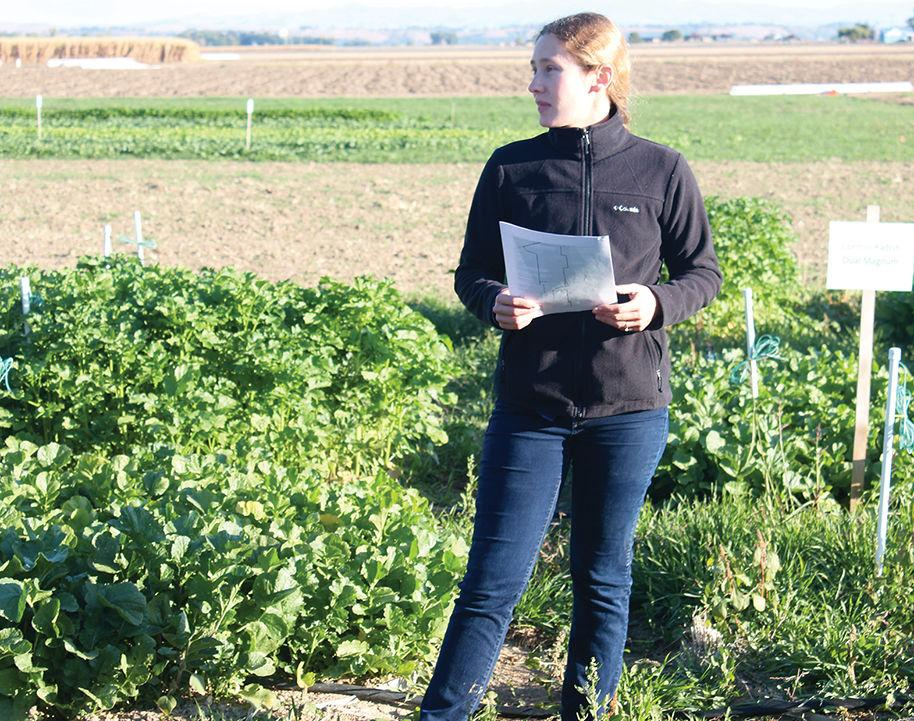 Fall Cover Crop Tour topics include weed control, early harvest