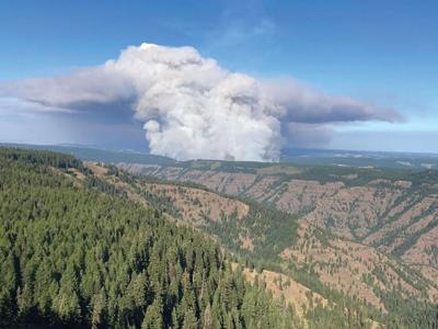 Additional overhead, resources assigned to Elbow Creek Fire