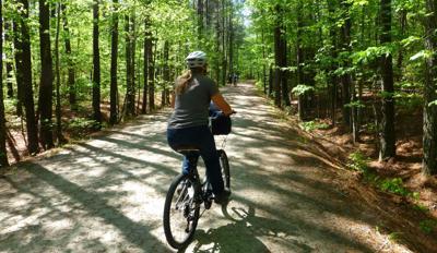Cyclist on trail