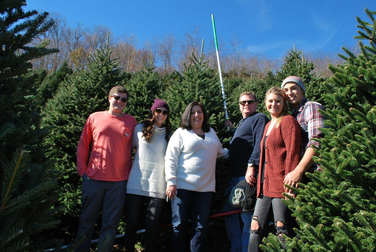 McCollum family chooses their tree