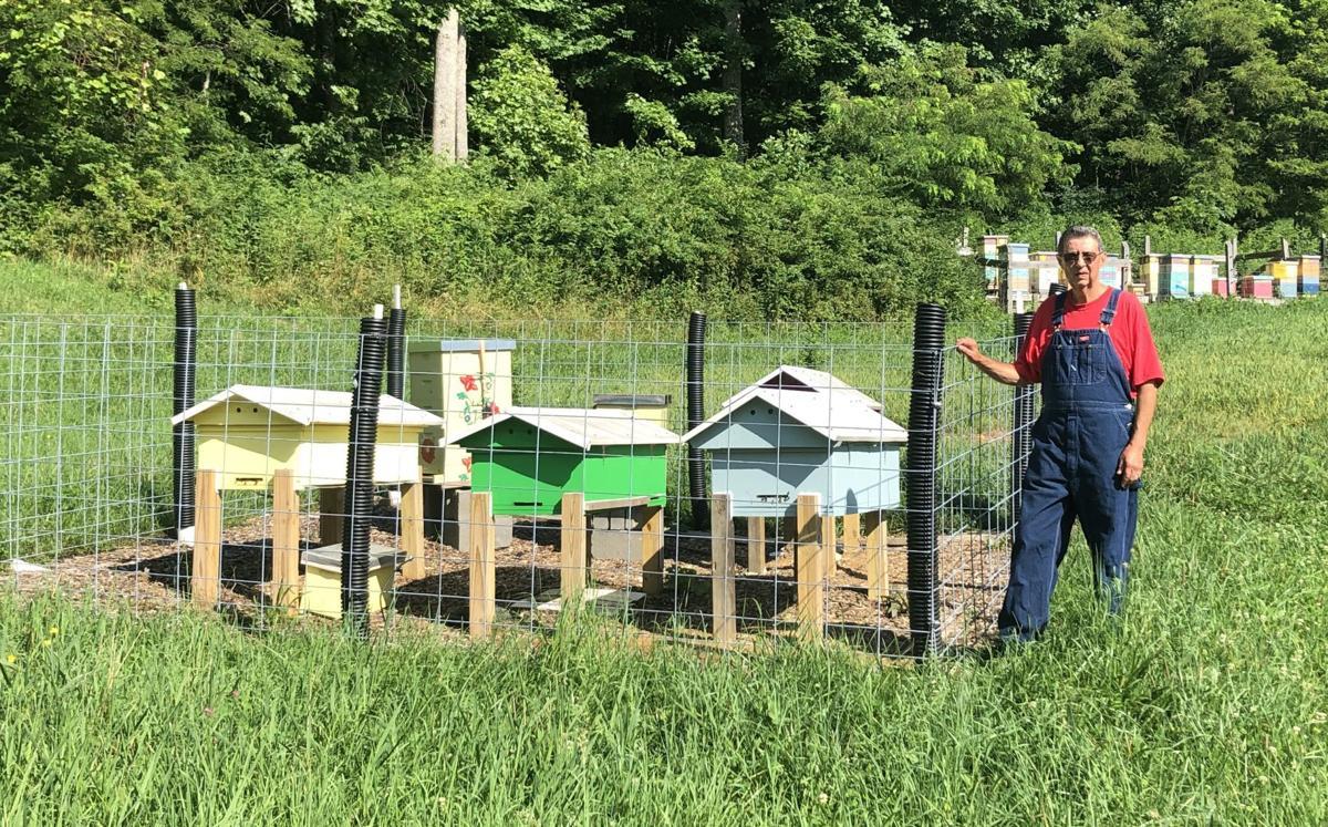 Jim Rash Bee Yard