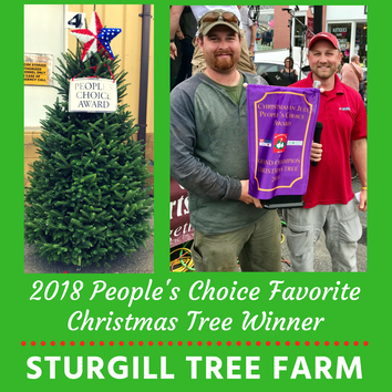 2018 People's Choice best-of-the-best Christmas Tree