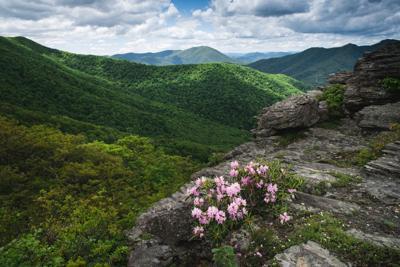 Bluff Mountain Preserve