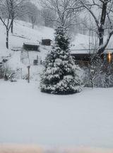 Ashe County snow 1/8 112