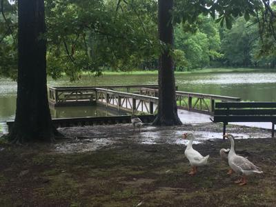 Lucas Pond Ready For Free Fishing Weekend