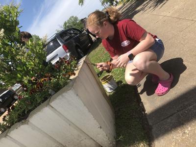 Parks and Recreation seeks volunteers for community revitalization