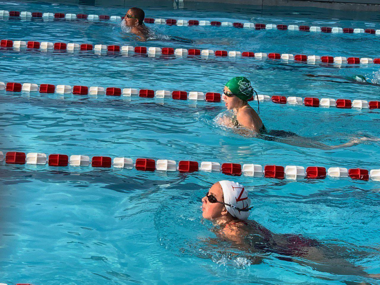 Bobcat Swim Club