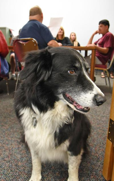 Minnie visits Nelsonville Public Library