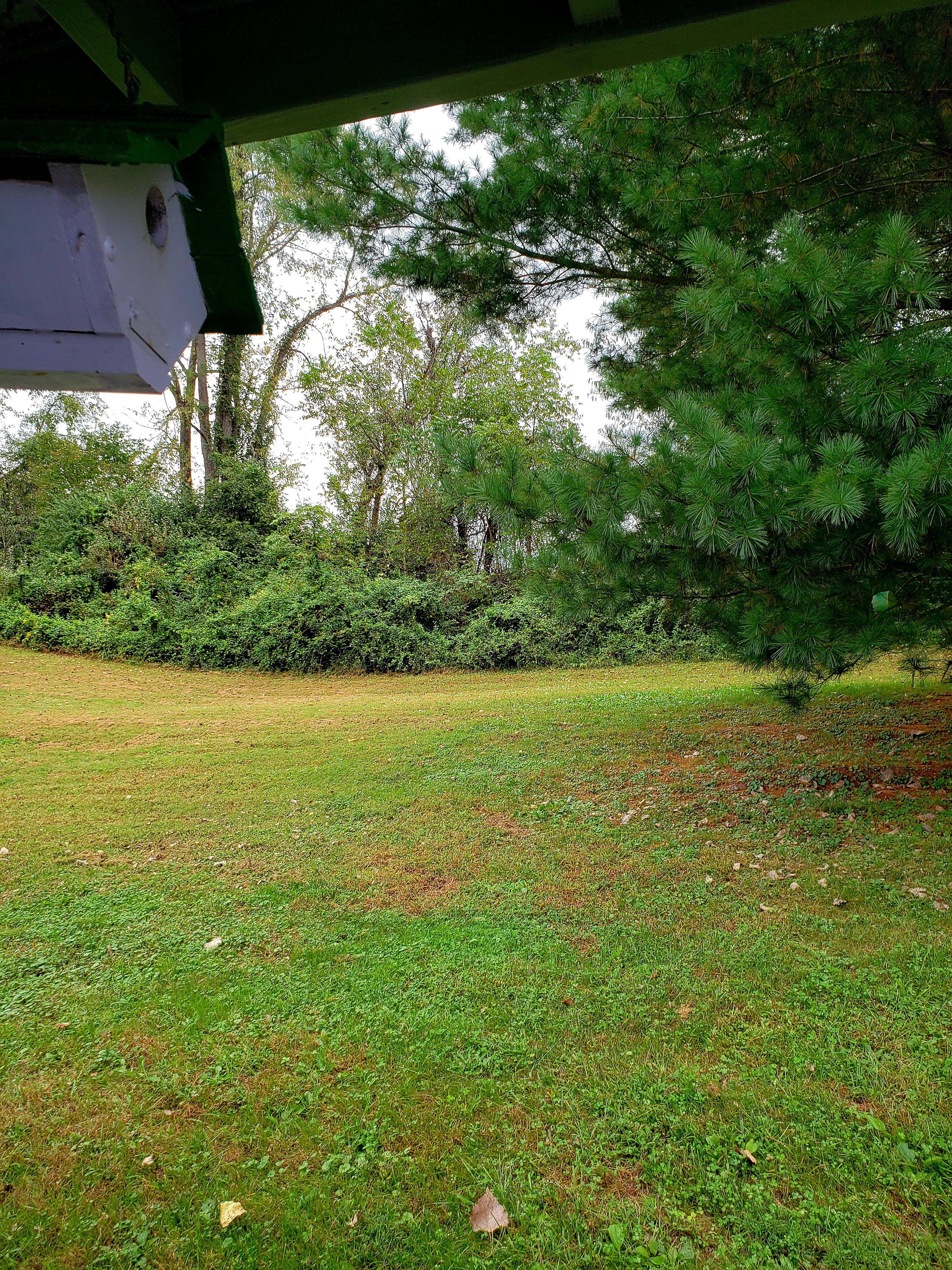 Immediate Occupancy - Clean - Nice Back Yard image 1