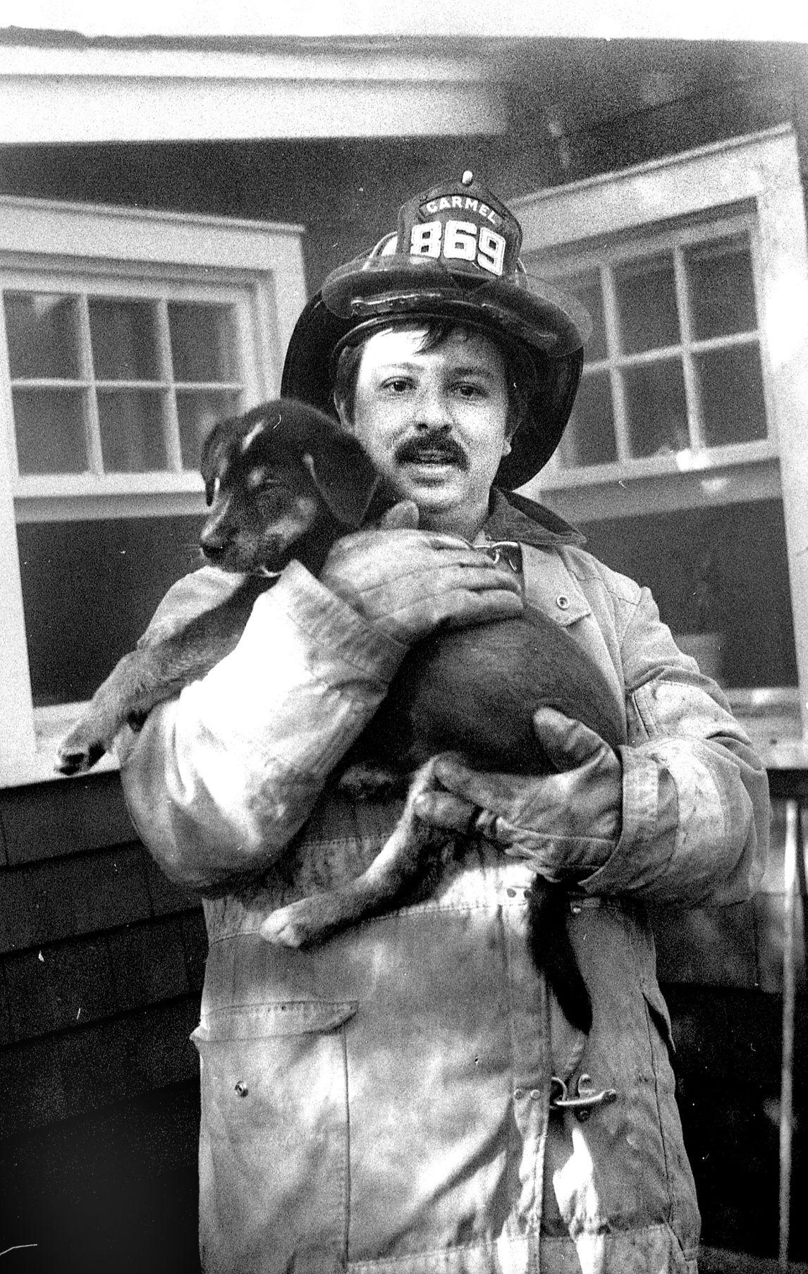 dog saved - dennis col