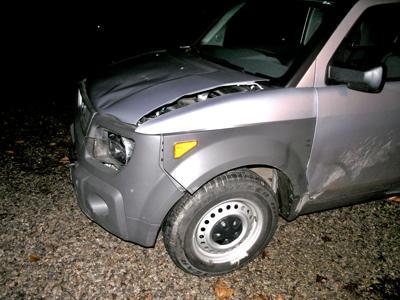 Dennis deer wreck