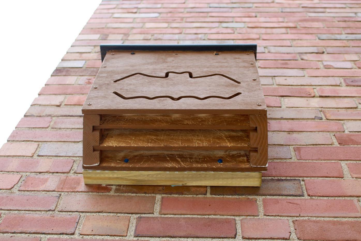 Bat dwelling