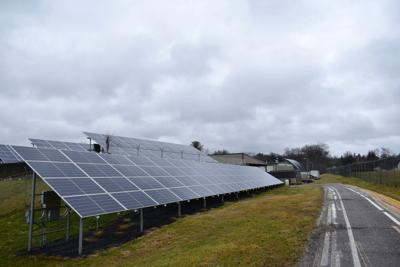 Water plant solar