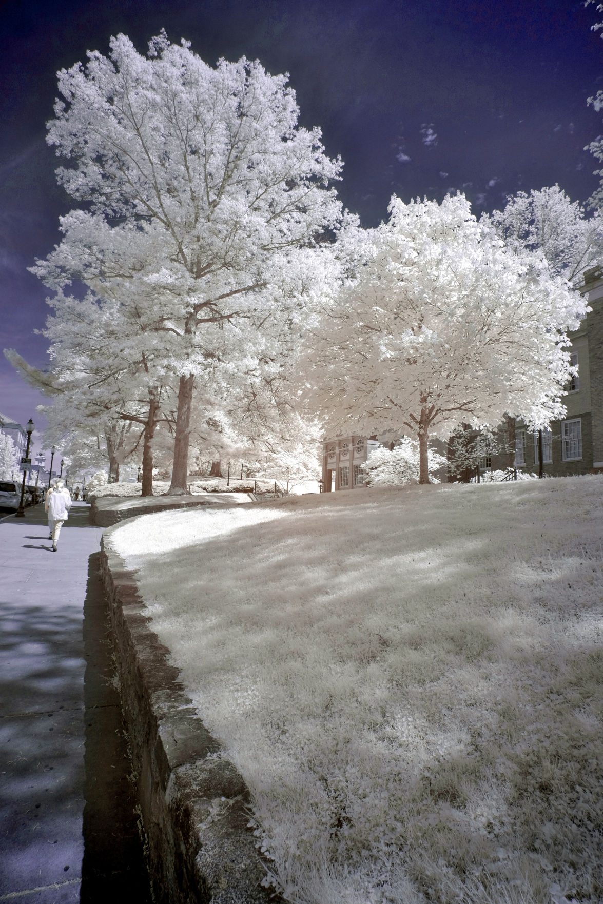 College Green infrared