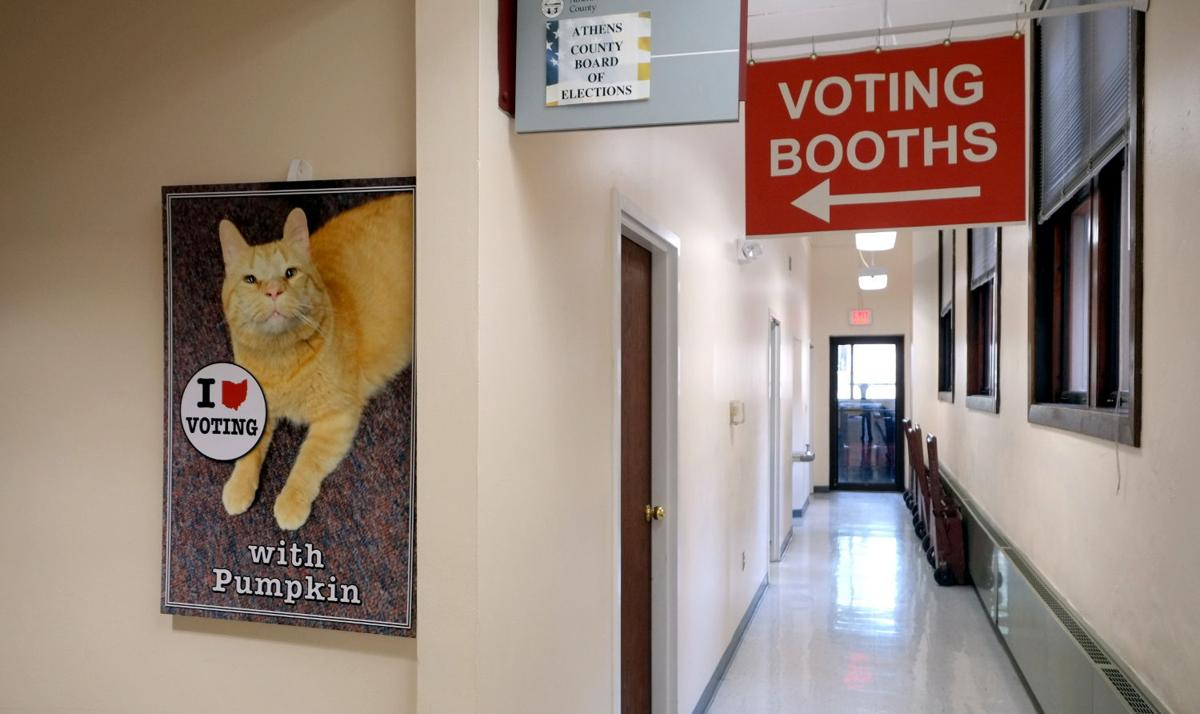 voting booths at Board of Elections