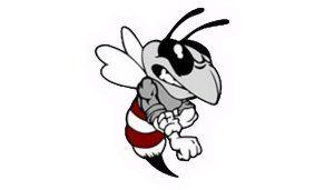 hornet_logo copy stroke.tif