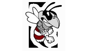 Athens Hornet logo