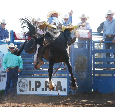 Johnson Riding Strong In Summer Events Sports